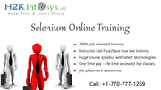 Automation Testing Online Training and Placement Assistance in USA